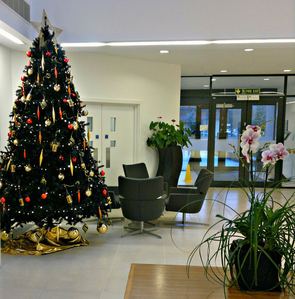 Christmas Decorations In Office: Office Christmas Decorations